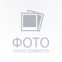 Эл.дрель GBM 13-2 RE (безударная) ,